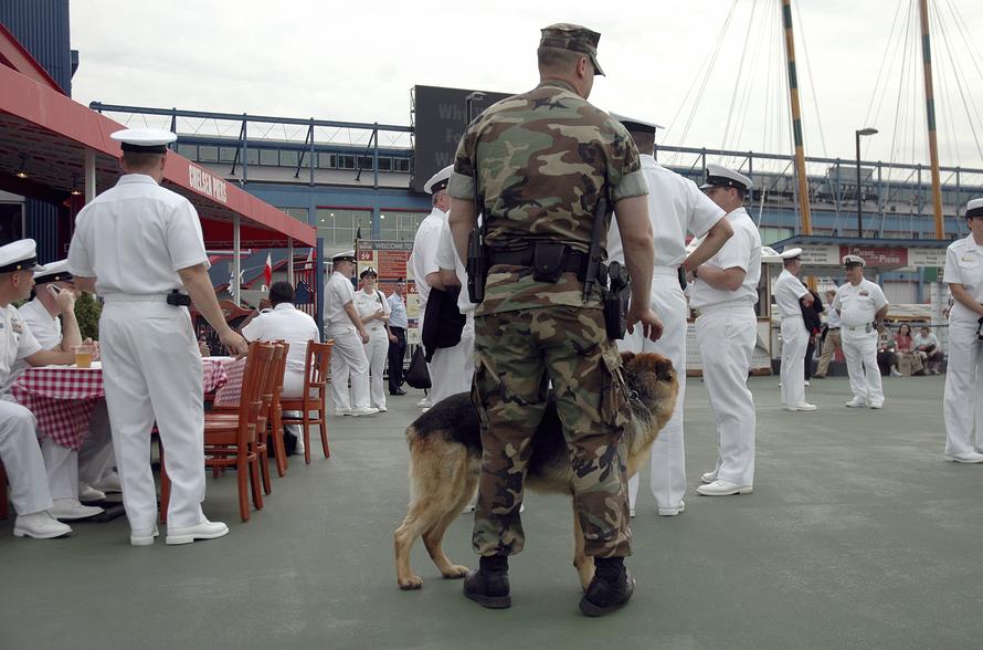 Warrior Dog Foundation