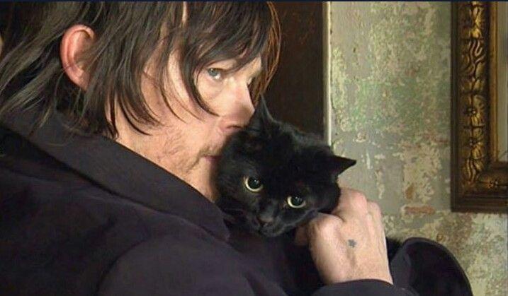 eye in the dark, cat true stories, norman reedus cat