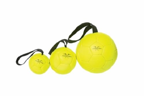 new puppy checklist, new puppy, puppy, floating dog ball