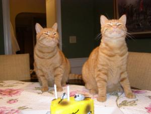 With my bestie on my birthday! Photo credit: colemontate