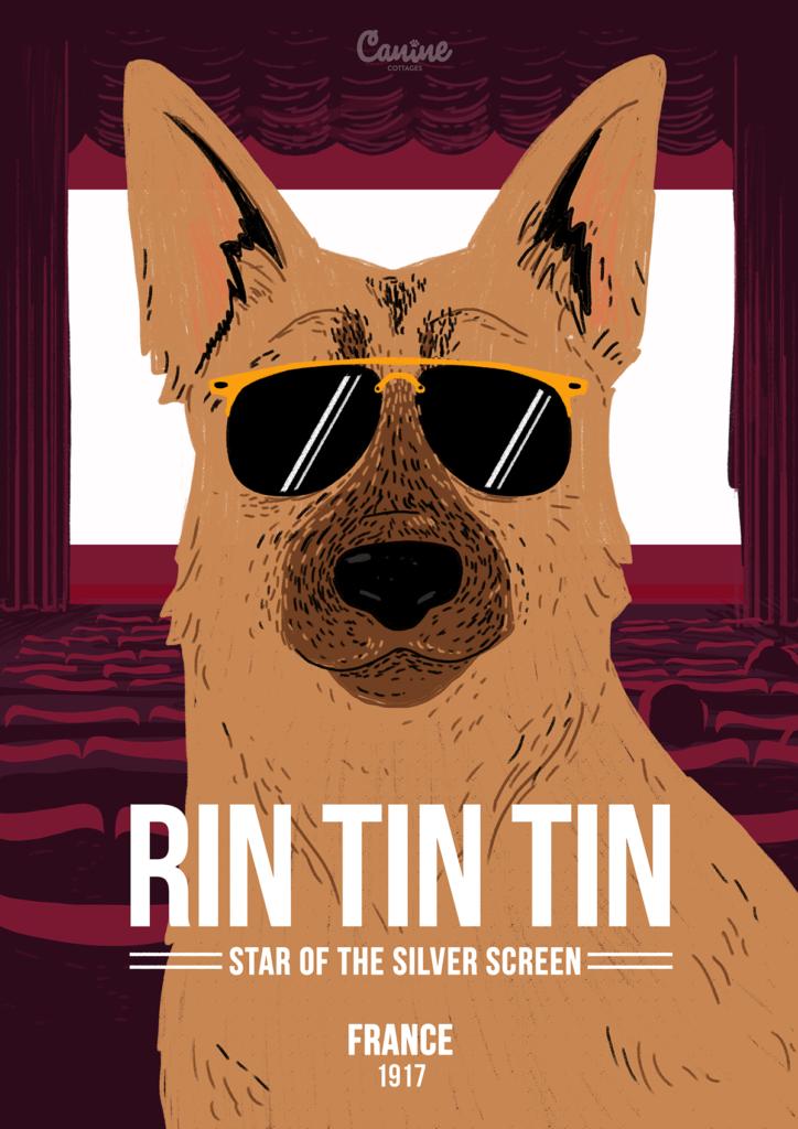 5-Rin Tin Tin