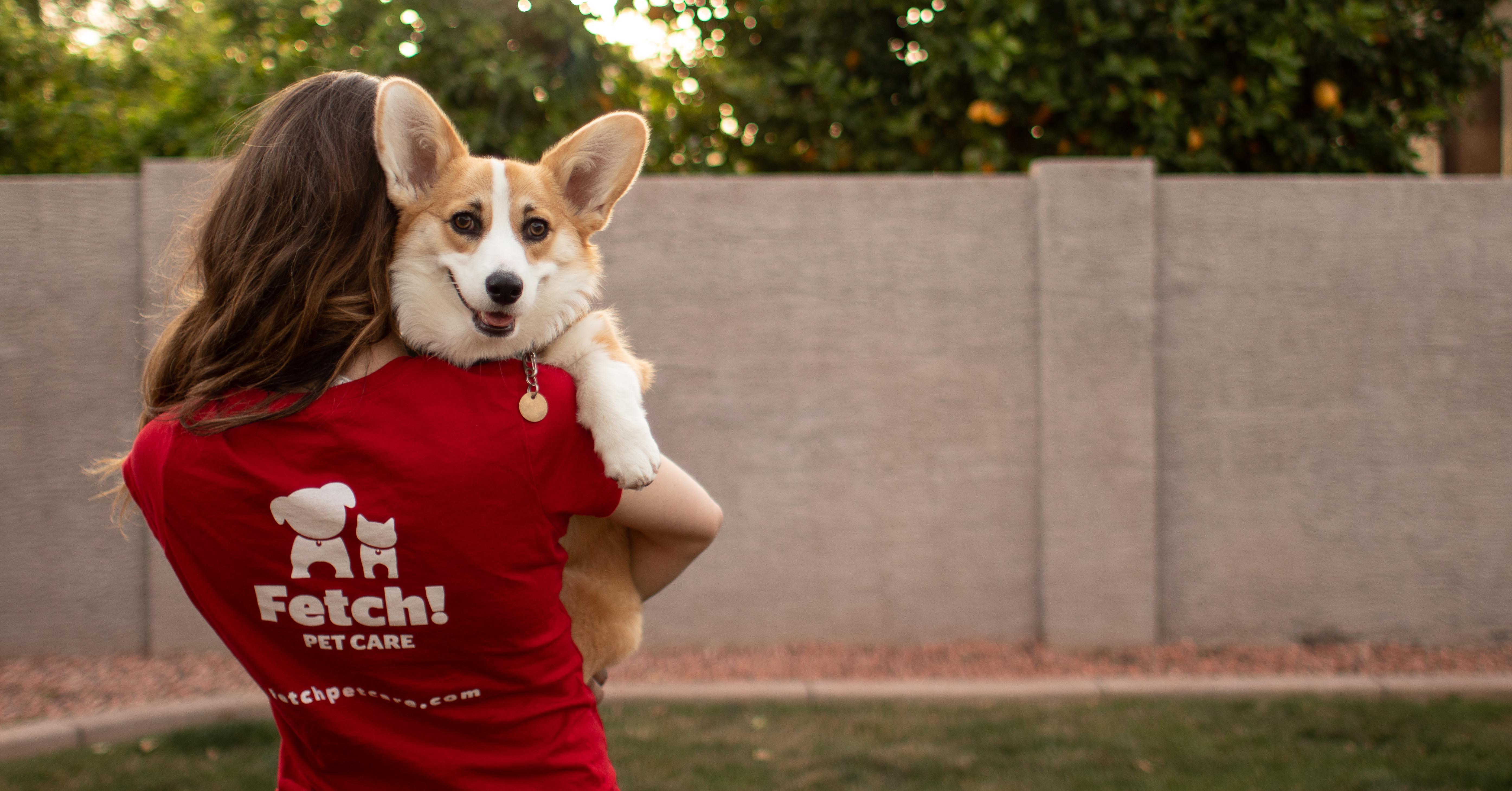 Fetch! Pet Care Dog Walking, Pet Sitting, Cat Visits, Boarding