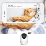 Netvue Cat