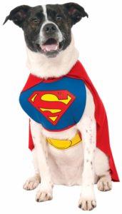 Super Hero Pet Costume