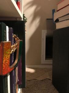 Interior Kitty Litter Room Access Door